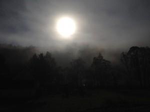 Herbstlicht 2, 2015