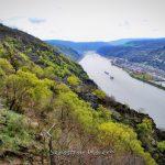 Der Rhein bei Oberwesel - Sebastian Maier © 2016